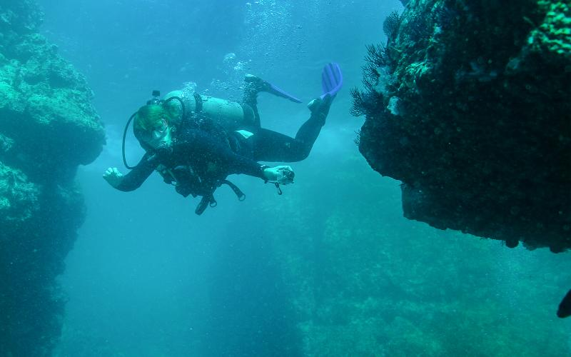 Scuba Dive Sites for experienced Divers in Puerto Vallarta Mexico |