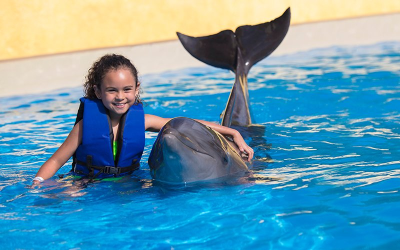 Kids dolphin ride in Vallarta|