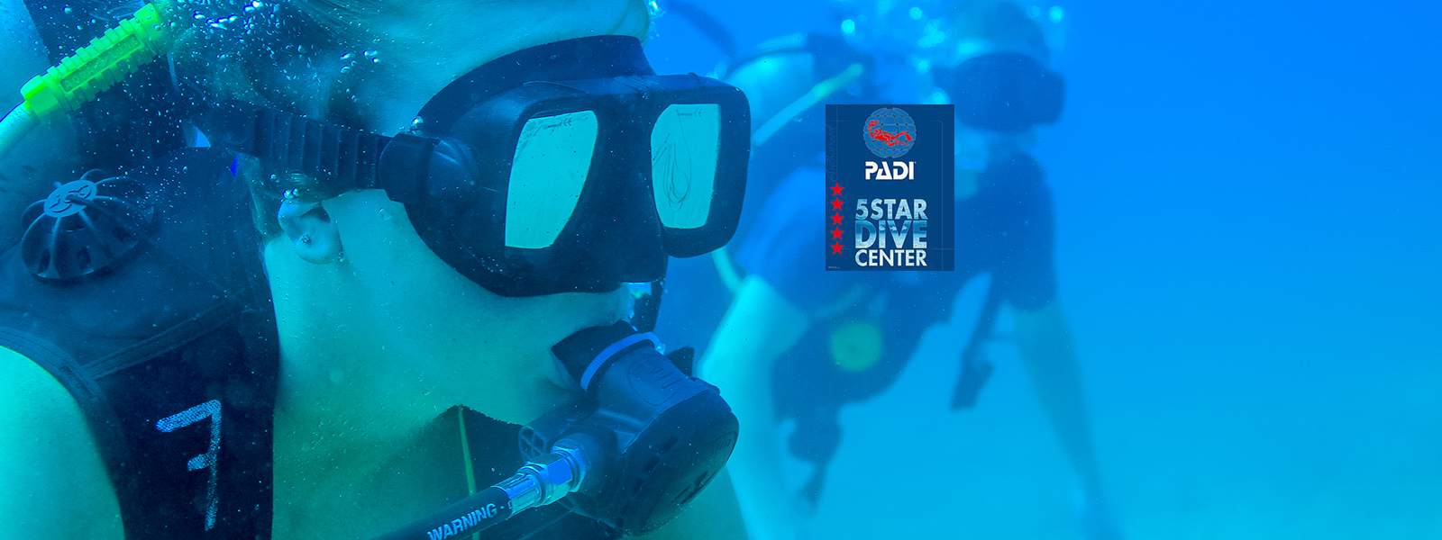 Reserve Your Padi Certification Course Today Cabo Adventures