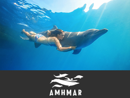 AMHMAR (The Mexican Association of Habitats for the Interaction and Protection of Marine Mammals A.C.)