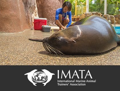International Marine Animal Trainer's Association (IMATA)
