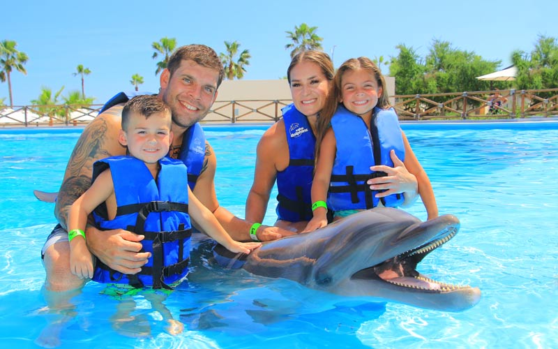 Family-friendly dolphin swim in Cabo|