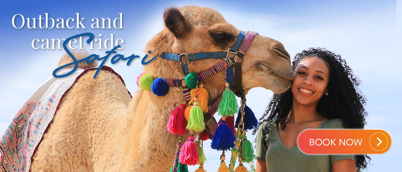 Outback and camel ride safari | Cabo Adventures