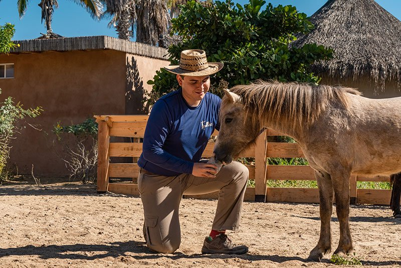 rescued animal reserve in cabo adventures