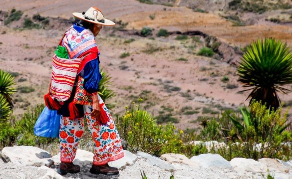 Huichol indigenous in his traditional clothing