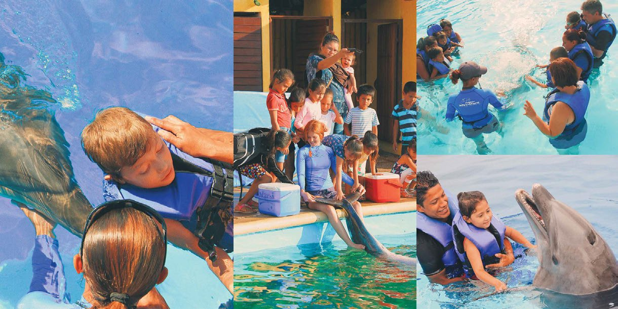 *We bring more than 900 therapies and 500 dolphin experiences for children in need, suffering serious diseases or disabilities.