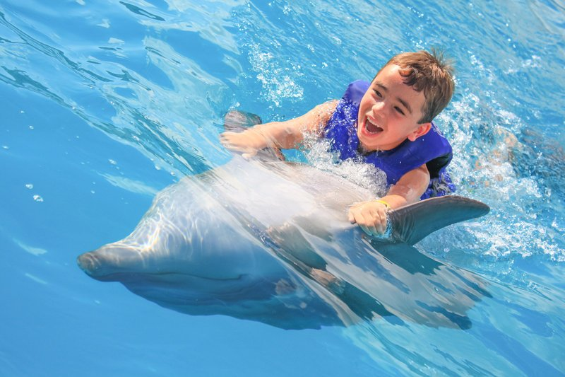 Cabo dolphin swim for kids
