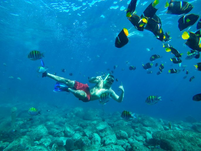 snorkeling with beautiful fish