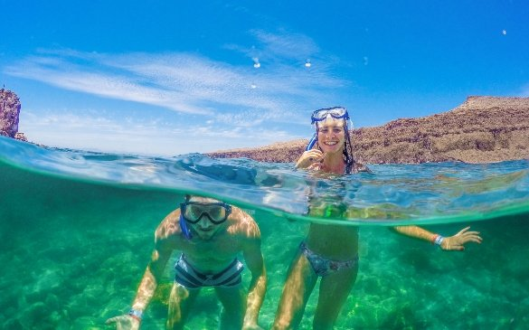snorkeling in the Sea of Cortez